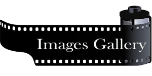 Foto_Gallery